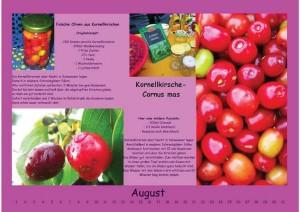 Wandkalender August