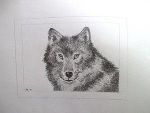 Wolf fertig