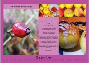 Wandkalender Dezember
